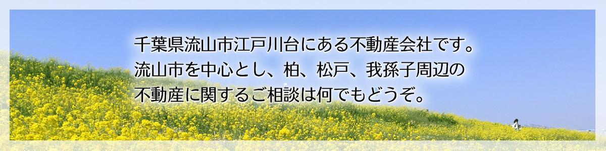千葉県流山市江戸川台の「やしま不動産」。柏、松戸、我孫子周辺の不動産に関するご相談を承ります。